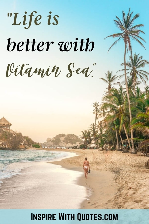 """A beachitul beach with palm trees with the quote """"life is better with Vitamin Sea"""""""