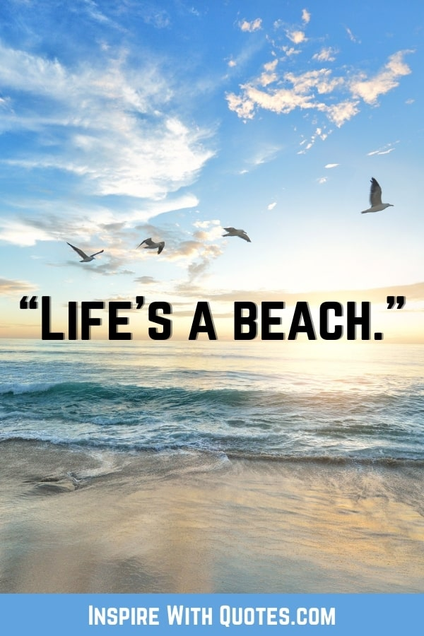 """seagulls flying on the beach with the quote """"life's a beach"""""""