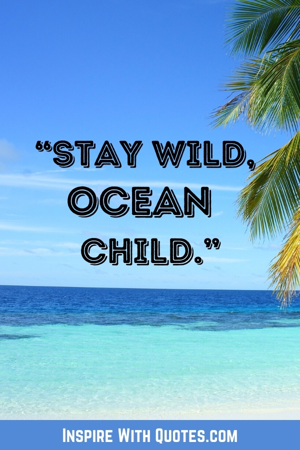 """beautiful beach with a palm tree and quote """"stay wild, ocean child"""""""